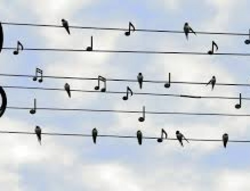 Body & Mind  – In Verbinding door en met muziek